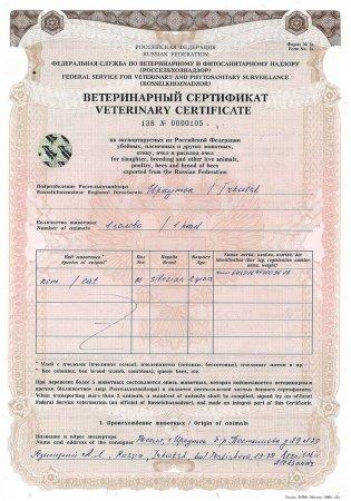 Особенности офрмления ветеринарных сертификатов